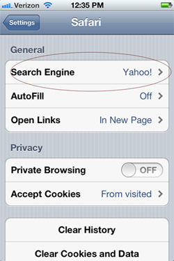 Default search setting in Safari on iPod, iPhone